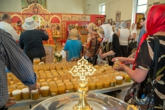 medovyi_spas-14-08-2014_21