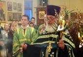 Verbnoe-Voskresenie_13-04-2014_06-1