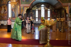 10082014_sergius_of_radonezh_liturgy_08