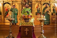 10082014_sergius_of_radonezh_liturgy_14