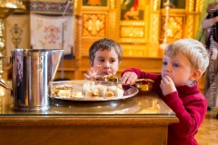 10082014_sergius_of_radonezh_liturgy_27