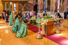 10082014_sergius_of_radonezh_liturgy_31