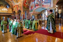 10082014_sergius_of_radonezh_liturgy_35