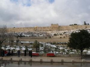 Вид на город с Елеонской горы из Гефсиманского сада. Через эти ворота в стене, которые сейчас забиты, входил на ослике наш Господь в вербное Воскресенье
