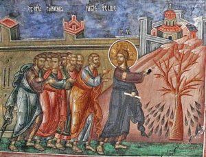 Проклятие Господом бесплодной смоковницы