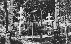 Место захоронения прп. Нектария Оптинского